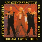 A Flock Of Seagulls - Dream Come True
