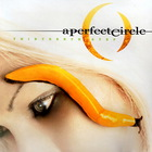 A Perfect Circle - Thirteenth Step