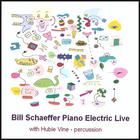 Bill Schaeffer - Piano Electric Live