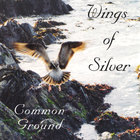 Common Ground - Wings of Silver
