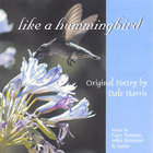 Dale Harris - Like A Hummingbird