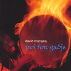 david macejka - Poi For Gadje