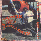 Howie and The Hillcats - Roadside Oddities