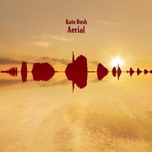 Aerial Disc 2