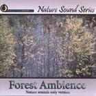 Nature Sound Series - Forest Ambience (Nature sounds only version)