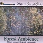 Nature Sound Series - Forest Ambience (with relaxing music)