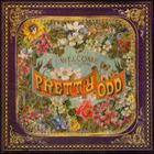 Panic! At The Disco - Pretty Odd