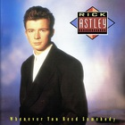 Rick Astley - Whenever You Need Somebody
