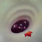 Robin Trower - Long Misty Days (Vinyl)