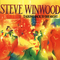 Steve Winwood - Talking Back To The Night