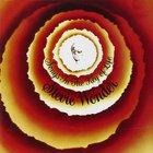 Stevie Wonder - Songs in the Key of Life (Reissued 2013) CD2