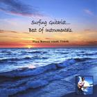 Surfing Guitarist - Best of Instrumentals
