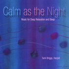 Tami Briggs - Calm as the Night