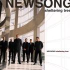 Newsong - Sheltering Tree