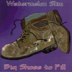 Watermelon Slim - Big Shoes To Fill