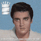 Elvis Presley - I Am An Elvis Fan