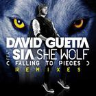 David Guetta - She Wolf (Falling To Pieces) (Feat. Sia) (CDS)