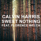 Calvin Harris - Sweet Nothing (Feat. Florence Welch) (CDS)