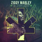 Ziggy Marley - In Concert