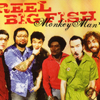 Reel Big Fish - Monkey Man (CDS)