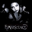 Evanescence - The Singles Collection