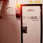 Dr. Dog - B-Room