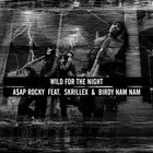 Wild For The Night (Feat. Skrillex) (CDS)