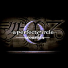 A Perfect Circle - Acoustic Live & Remixes