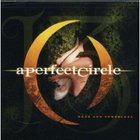 A Perfect Circle - Weak And Powerless (CDS)