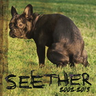 Seether: 2002-2013 CD1