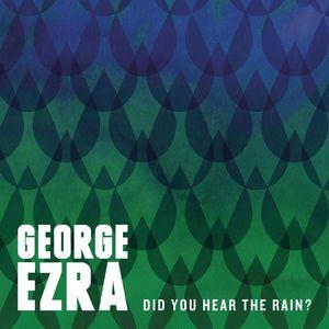 Did You Hear The Rain? (EP)