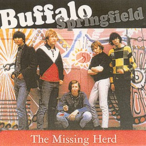 The Missing Herd: Do Not Approach Buffalo CD1