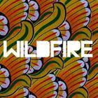 Wildfire (CDS)