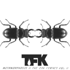 Metamorphosiz: The End Remixes Vol. 2 (EP)