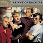A Flock Of Seagulls - Platinum & Gold Collection