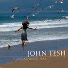 John Tesh - A Passionate Life