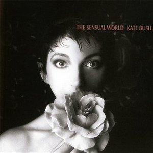 The Sensual World (Vinyl)
