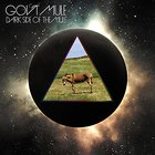 Gov't Mule - Dark Side of the Mule