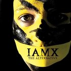 IAMX - The Alternative (Instrumental)