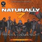 Hidden In Plain Sight - Vox Maximus Vol.1