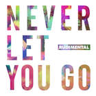 Rudimental - Never Let You Go (CDS)