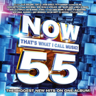 VA - Now That's What I Call Music! 55