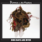 Florence + The Machine - Dog Days Are Over (CDS)
