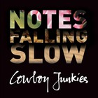 Cowboy Junkies - Notes Falling Slow CD4