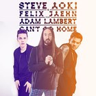 Steve Aoki - Can't Go Home (Radio Edit) (CDS)