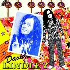 David Lindley - Mr. Dave