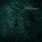 The Veil (CDS)