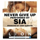 Never Give Up (CDS)