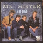Mr. Mister - Is It Love (VLS)