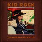 Kid Rock - Tennessee Mountain Top (CDS)